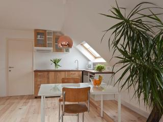 Bright and cosy apartment with bicycles
