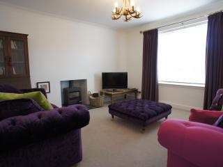 Spacious sunny lounge with flat screen television and a selection of books, DVD's and games