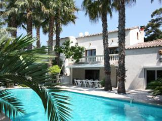 Pierrot 33550 villa amidst a garden with 200 palm trees, pool of 12 x 6 mtr.