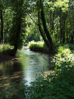 the nearby Coln River with private fishing