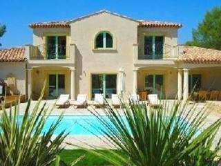 Magnolia 33640 for 8 with airconditioning, beautiful garden, private pool, Saint-Raphael