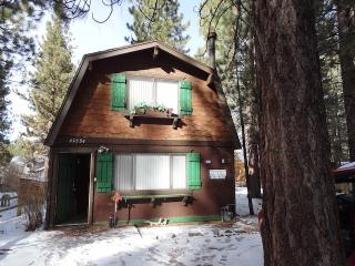 Silver Gardens with Large Hot Tub, Big Bear Lake
