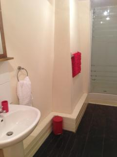 Shower Room: With Shower Cubicle, Wash Hand Basin and Toilet.