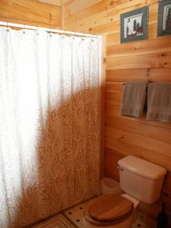 bathroom 1 with tub/shower