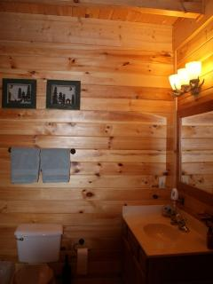 bathroom 1 sink
