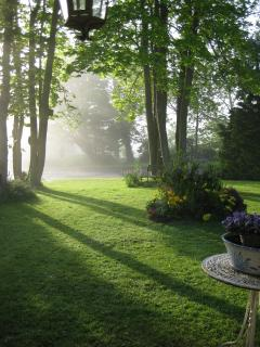 early morning mist on openplan front lawn