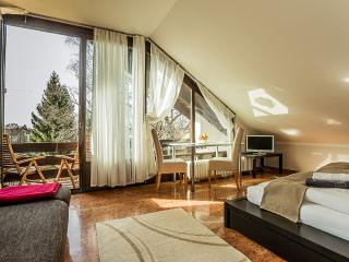 Terrace Apartment (3 Bedroom - max. 5 pax), Munique
