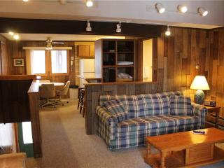 Located at Base of Powderhorn Mtn in the Western Upper Peninsula, A Quiet Trailside Condo with a Shared Hot Tub & Allows Dogs, Bessemer