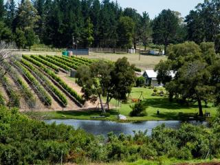Luka Wine Estate, Harkerville
