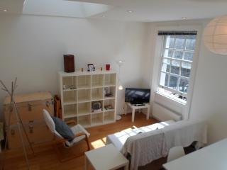 Modern flat in Central Kings Cross, London