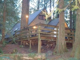 CR103hMapleFalls  - Rustic Cabin #86 is Pet Friendly!, Glacier