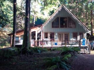 CR103uMapleFalls  - Cabin #99 has a Private Hot Tub and Wifi!, Glacier