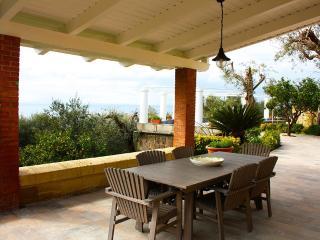The beautiful villa! - V738, Sorrento