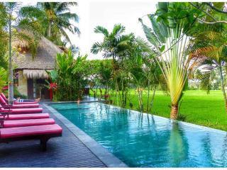 Amazing RiceField Views with Infinity Pool Villa Asmara