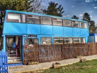 Betsy Blue, Shrewsbury