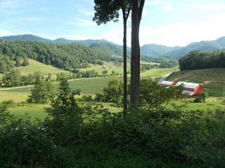 """Absolute Perfection""-Views, Private, Pet Friendly, Asheville"