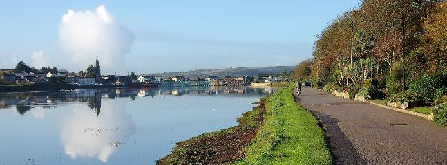 Hayle Estuary, a popular site for bird watching