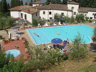 Villa Grassina, Pelago