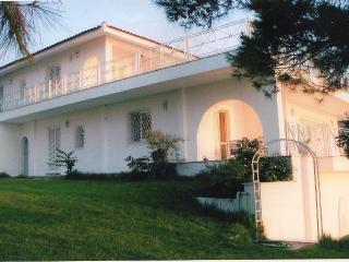 Lisianthos Villa