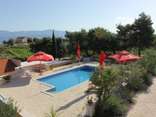 Lovely apartment in a villa with a pool, Donji Humac