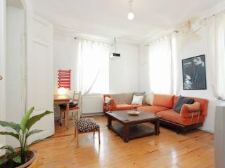 LOVELY CO(OL+ZY+MFY) FLAT @ GALATA WITH TERRACE