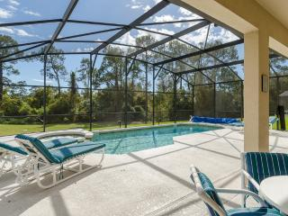 Serene Pool - Jacuzzi and Lanai in Beautiful Sunny Florida!