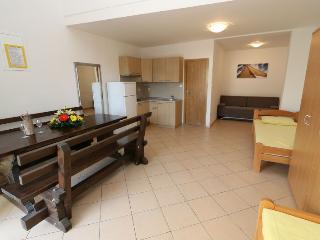 Large studio apartment for 4 people, Novalja