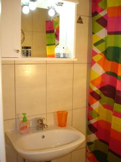 Private bathroom with shower, wash basin and toilet vase
