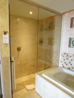 Master Suite Private Bath Walk-In Shower
