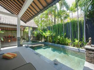 Villa Allira;  Amazing 1 Bedroom large Villa in beachside Seminyak