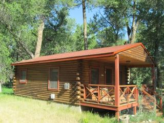 Woodland Brook Wintersong – Buena Vista, CO Cabin 4
