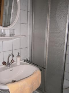 Bathroom with Shower - Appt 1