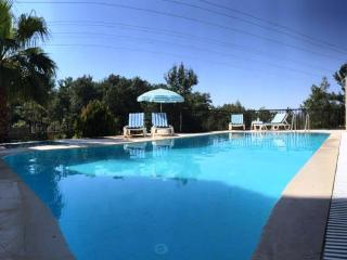 Villa Orman, Gocek,