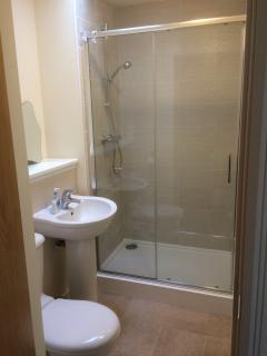 En-suite shower room from master bedroom
