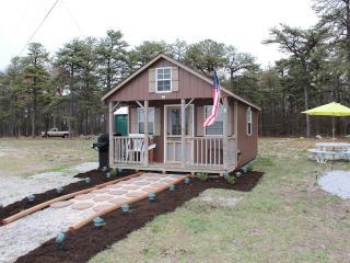 Modern Tiny House Primitive Cabin - Wifi & Netflix, Biglerville