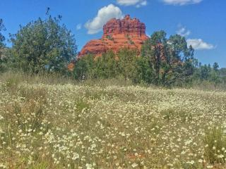 Location Location Location Sedona Home