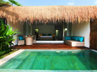 Tropical Suite Villa private pool garden view 4