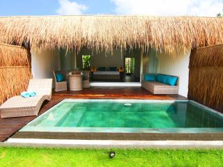 Tropical Suite Villa private pool garden view 5