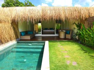 Tropical Suite Villa Canggu private pool No 2