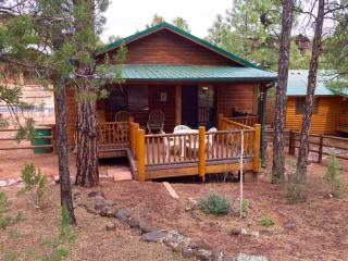 Peaceful Pines Cabin w/ Fenced Yard for Dogs! Near lakes/hiking/biking and more!