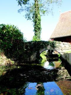 la rivière du Domaine de Ferchaud