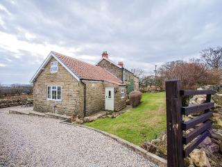 Hawthorn Cottage, Goathland, N.York Moors. Own hot tub. Summer dates available.