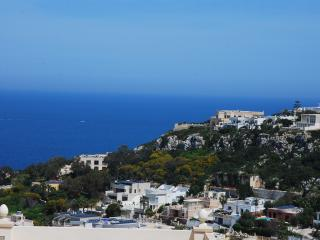 Malta, Mellieha Beaches, Quiet, Large, Seaview Apt