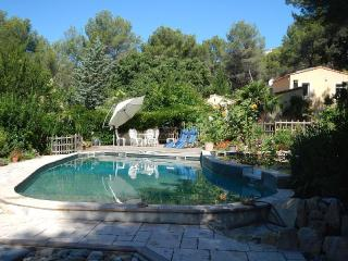 Beautiful 4 bedroomed Villa with pool near Cassis and Aix