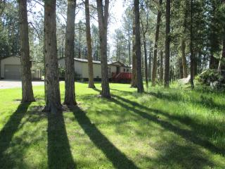 Dakota Pines Hideaway, Custer