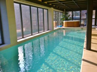 Indoor pool and Jacuzzi to enjoy exclusive life, Turin