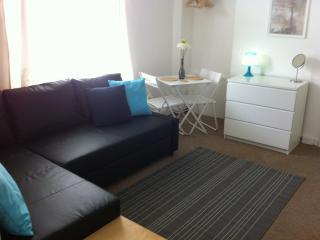 Cardiff Townhouse Studio Apartment (sleeps 2+1)