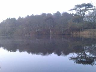 The main pond in Ardwell Gardens is within easy walking distance of the Chalets.