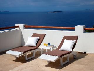 Sunbeds on the west facing terrace