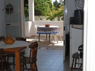 Appartamento riservato con giardino, Santa Maria al Bagno